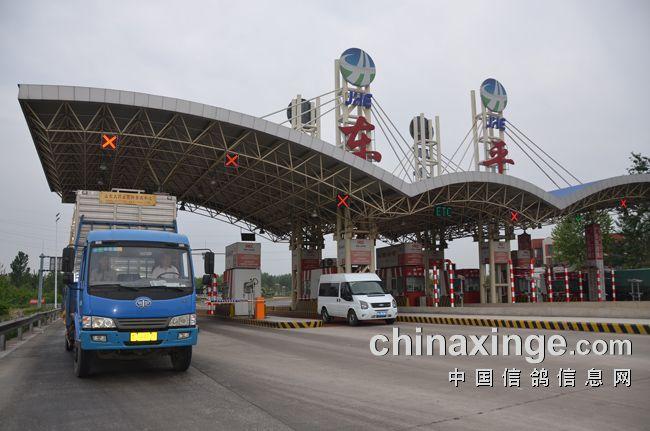 信鸽协会筹备组宣读了台州市信鸽协会筹建工作报告_唐山领航国际赛鸽公棚